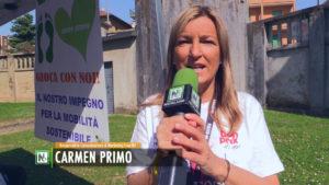 Biella Colors School - Carmen Primo